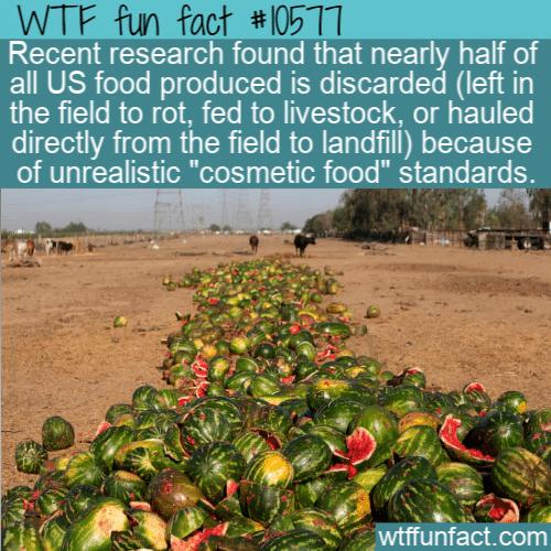 WTF Fun Fact - Cosmestic Food Waste
