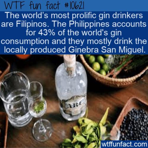 WTF Fun Fact - Gin Popular Withi Filipinos