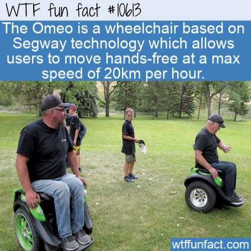 WTF Fun Fact - Omeo Hands-free Wheelchair