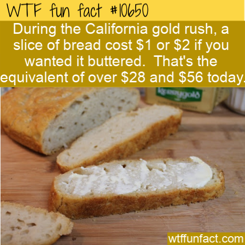 WTF Fun Fact - Gold For Bread