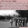 WTF Fun Fact – Gun Salute Origin