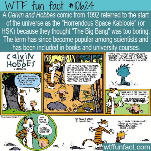 WTF Fun Fact - Horrendous Space Kablooie