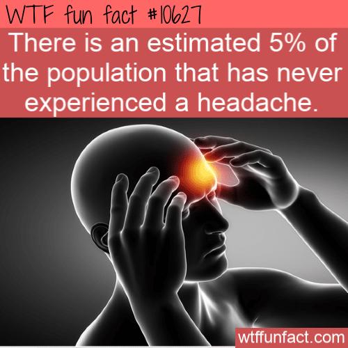 WTF Fun Fact - Never Had A Headache