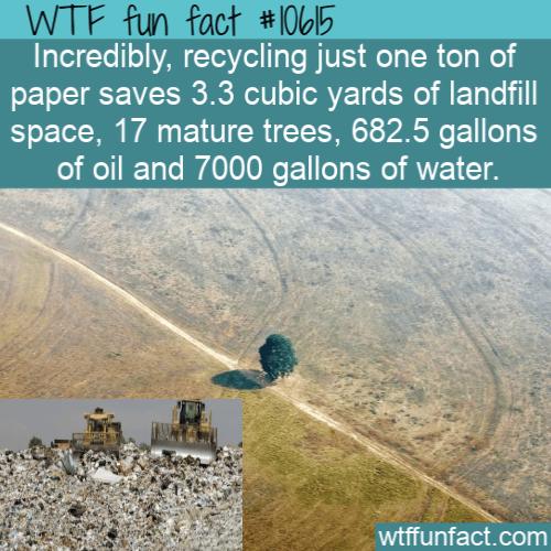 WTF Fun Fact - Saving Natural Resource