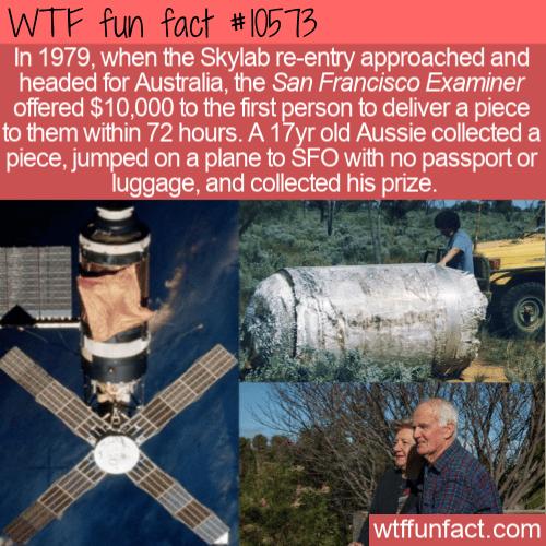 WTF Fun Fact - Skylab Reward