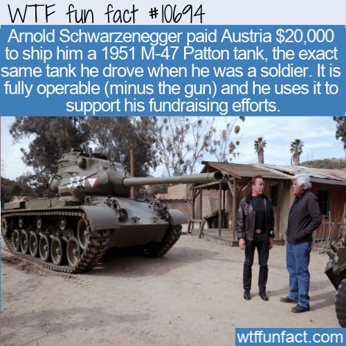 WTF Fun Fact - Arnold's Tank