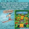 WTF Fun Fact – Cowabunga!