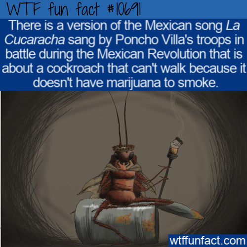 WTF Fun Fact - La Cucaracha