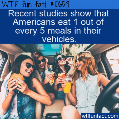 WTF Fun Fact - Meals In Cars