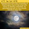 WTF Fun Fact – Moon And Rain