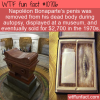 WTF Fun Fact – Bonaparte's Part