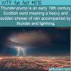 WTF Fun Fact – Thunder-plump