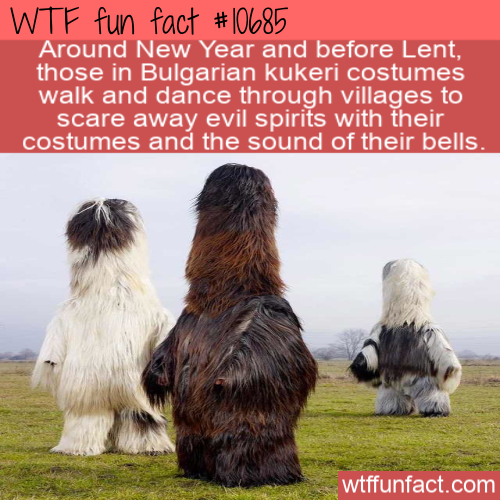 WTF Fun Fact - Traditional Bulgarian Kukeri costumes
