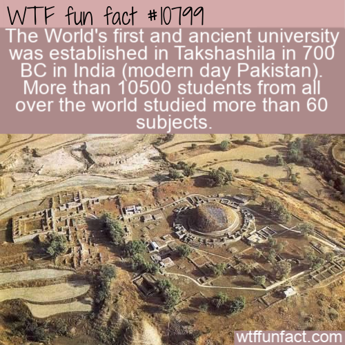 WTF Fun Fact - Ancient University