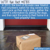 WTF Fun Fact – Dog Poop Lost & Found