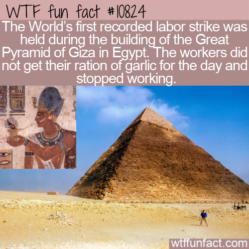 WTF Fun Fact - Egypt Labor Strike