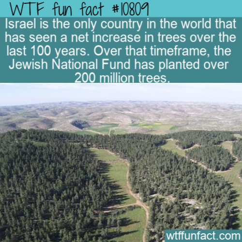 WTF Fun Fact - Green Israel