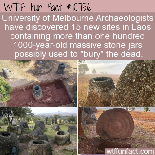 WTF Fun Fact - Jars For Dead