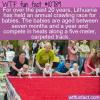 WTF Fun Fact – Lithuania Crawling Race