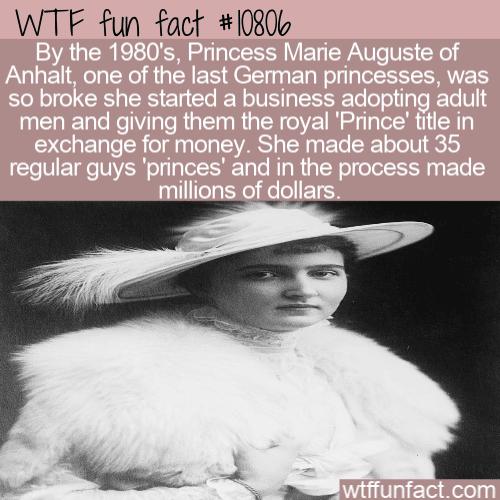 WTF Fun Fact - Broke Princess