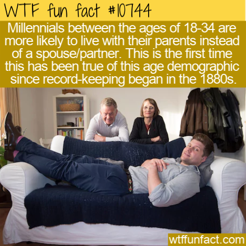 WTF Fun Fact - Millenials Stay Home