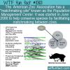 WTF Fun Fact – Zoo Matchmaking Site