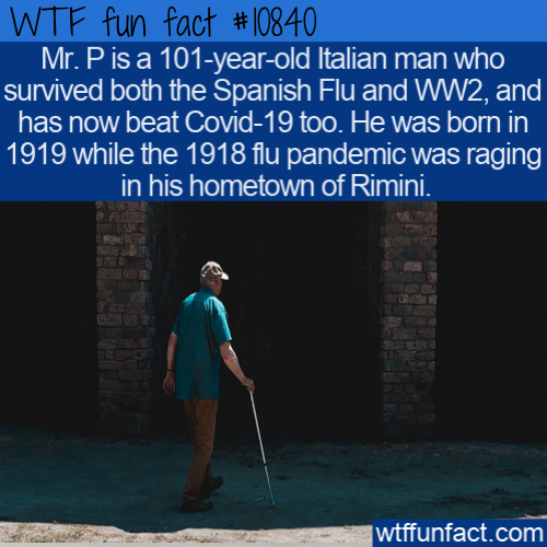 WTF Fun Fact - Mr. P Has Been Fighting For Hundred Years