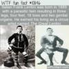 WTF Fun Fact – The Great Lentini