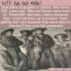 WTF Fun Fact – Bleu de Genes
