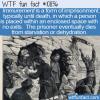 WTF Fun Fact – Immurement