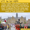WTF Fun Fact – Kattenstoet
