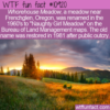 WTF Fun Fact – Whorehouse Meadow