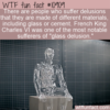 WTF Fun Fact – Material Delusions