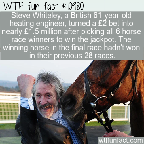 WTF Fun Fact - 29th time lucky