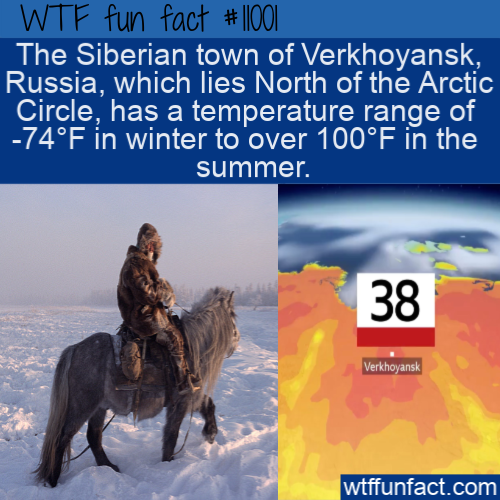 WTF Fun Fact - Arctic Temperatures