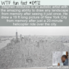 WTF Fun Fact – Artist Stephen Wiltshire