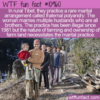 WTF Fun Fact – Fraternal Polyandry