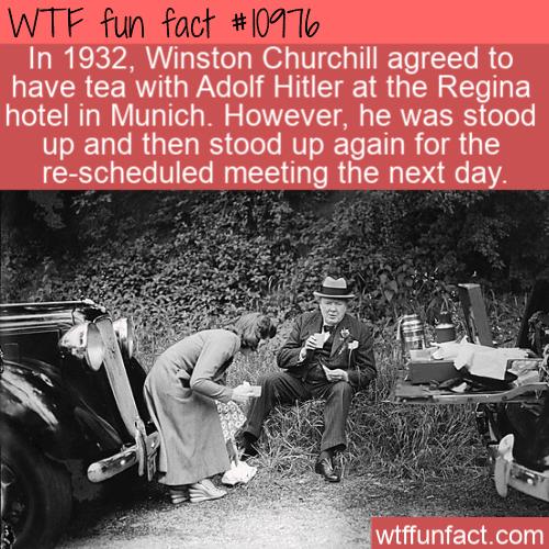 WTF Fun Fact - Churchill And Hitler Tea Party