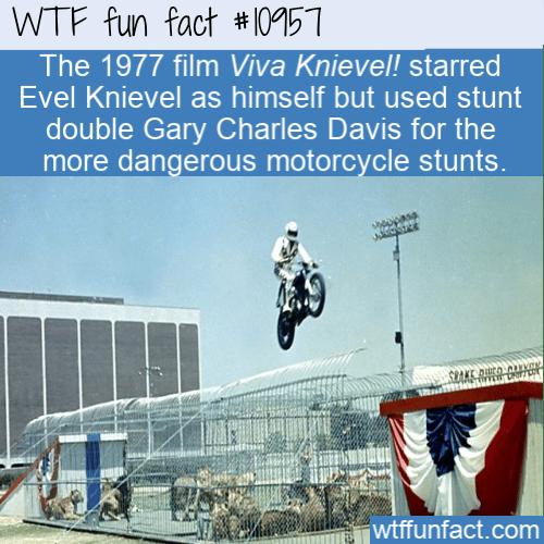 WTF Fun Fact - Evel Knievels Stuntman