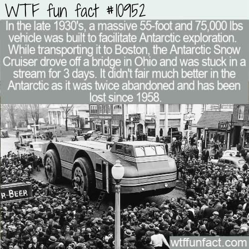 WTF Fun Fact - Greatest Invention Buried Into Snow