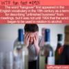 WTF Fun Fact – Hangover Origin