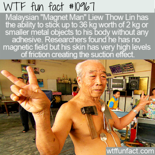 WTF Fun Fact - Liew Thow Lin Mr. Magnet