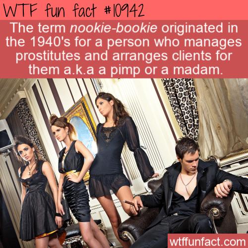 WTF Fun Fact - Nookie-bookie