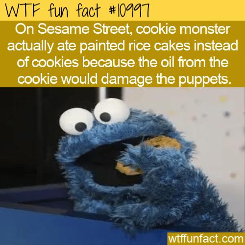 WTF Fun Fact - Rice Cake Monster