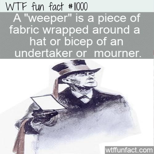 WTF Fun Fact - Weeper