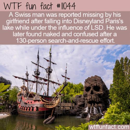 WTF Fun Fact - Bad Disneyland Trip