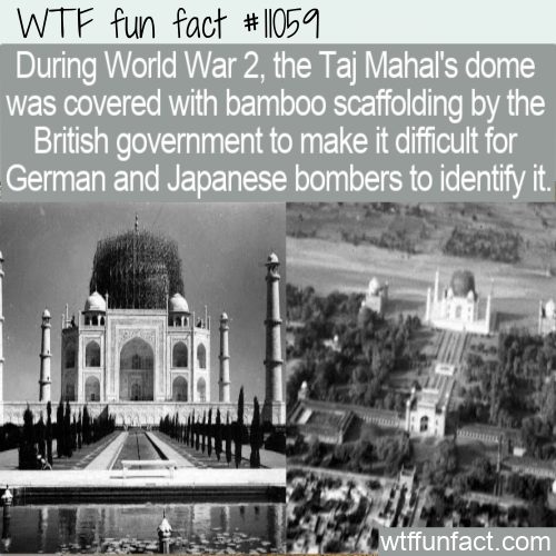 WTF Fun Fact - Bamboo Covered Taj Mahal