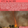 WTF Fun Fact – Fire Tornado