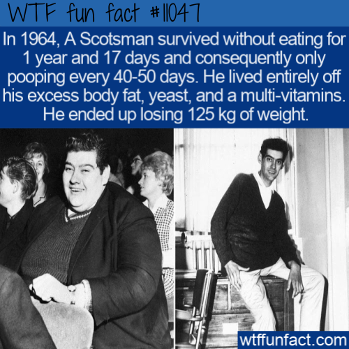 WTF Fun Fact - Grossly Obese Survivor