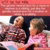 WTF Fun Fact – Nibling